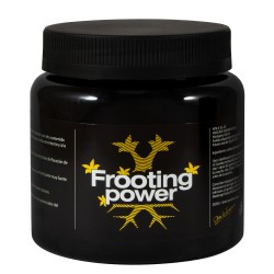 BAC FROOTING POWER 325GR