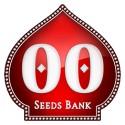 00 Seeds Bank Autoflorecientes