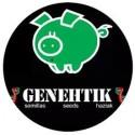 Genehtik Seeds Autoflorecientes
