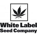 White Label Seed Company Autoflorecientes